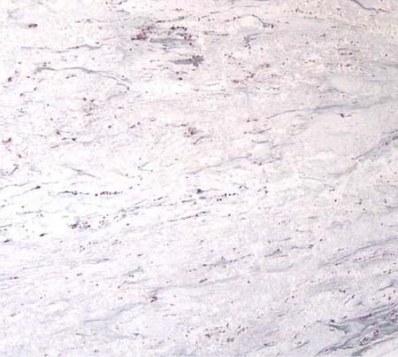 Bianco Juprana