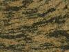 Tigar Skin